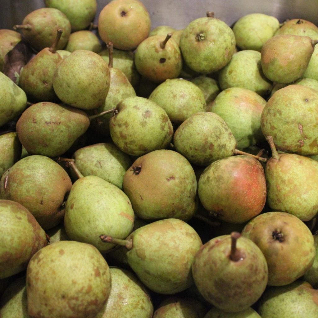 a sink full of pears