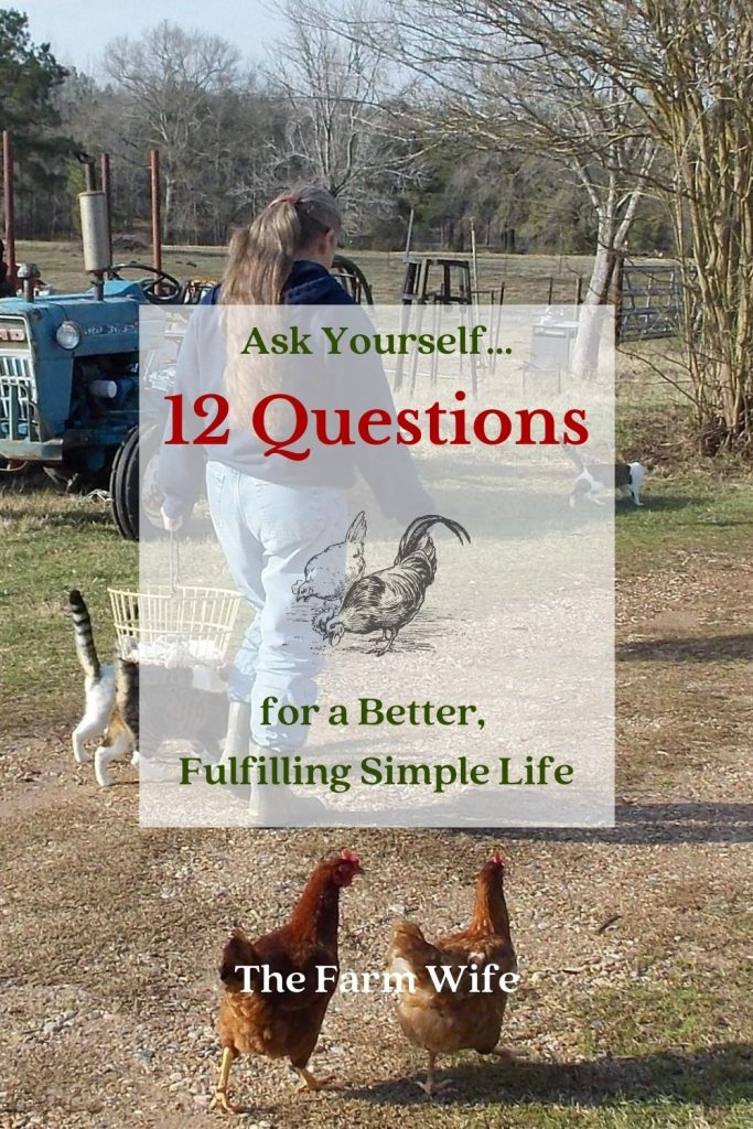Are you looking for a Simple Life? Ask yourself these 12 questions to see where you stand and where your journey can take you!