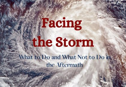 facing the storm - what to do and not to do in the aftermath