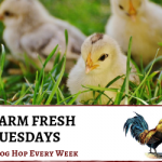 Welcome to the Farm Fresh Blog Hop 70!