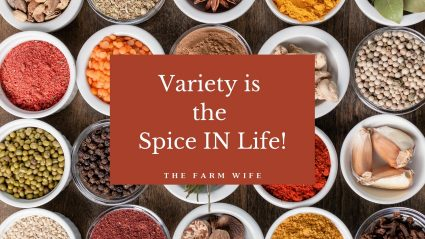 variety is the spice IN life