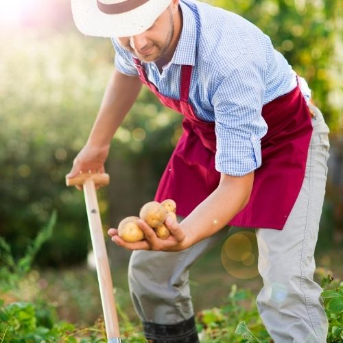 don't look down your nose at a farmer on your way to the grocery store