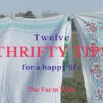 Thrifty Tips