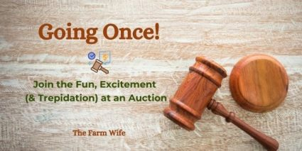 How to have fun at an auction