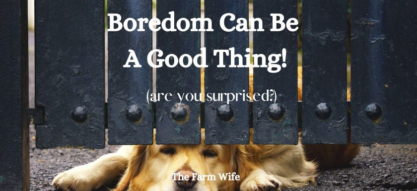 Boredom can be a good thing!