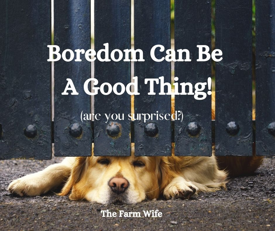 boredom can be good for you