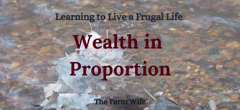 Learning to Live a Frugal Life - Wealth in Proportion