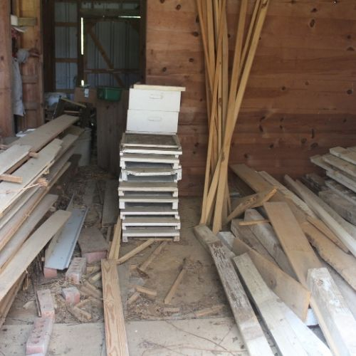 shed with hive boxes and lumber