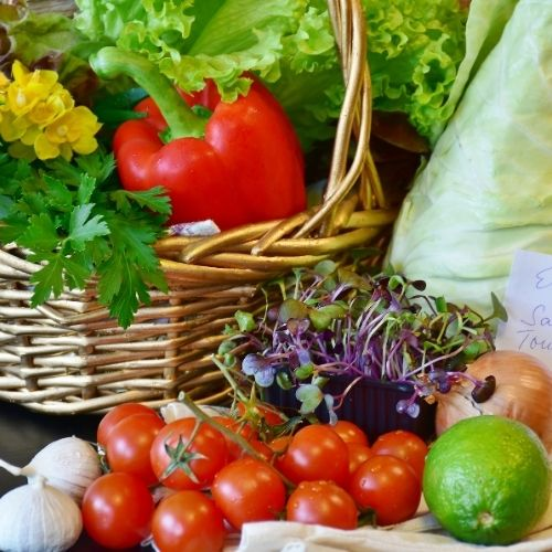 add wealth to your life by adding a vegetable garden