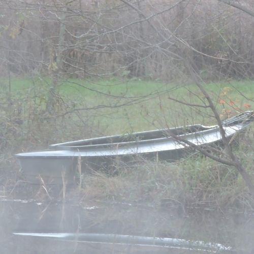 a boat on the edge of a pond surrounded by mist