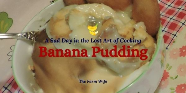 a bowl of fresh baked Banana Pudding
