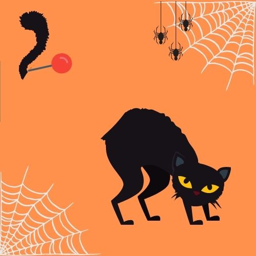 pin the tail on the cat Halloween party game