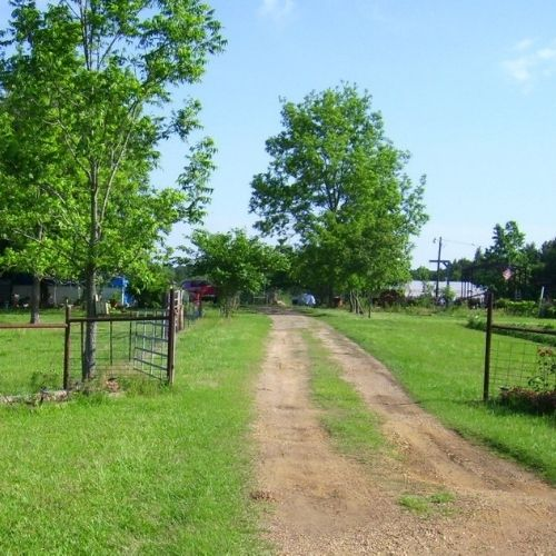 a dirt lane drive leading into a pasture