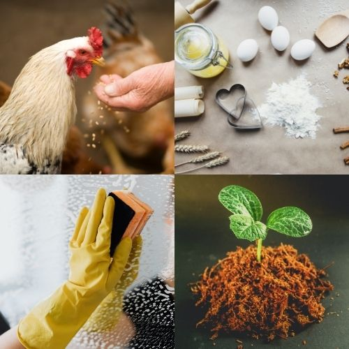 a rooster, baking supplies, seedling and a yellow rubber glove