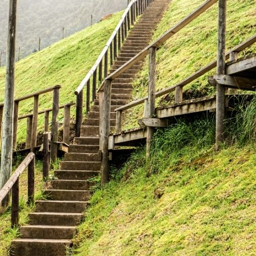 a steep wooden stairway leading up a hill