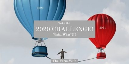 Hot air balloons representing 2020 and 2021 in the 2020 Challenge