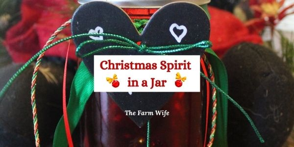 The Farm Fresh Blog Hop 83 has the Christmas Spirit!