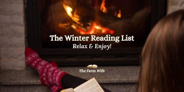 sitting by a fire and reading a book from the Winter Reading List