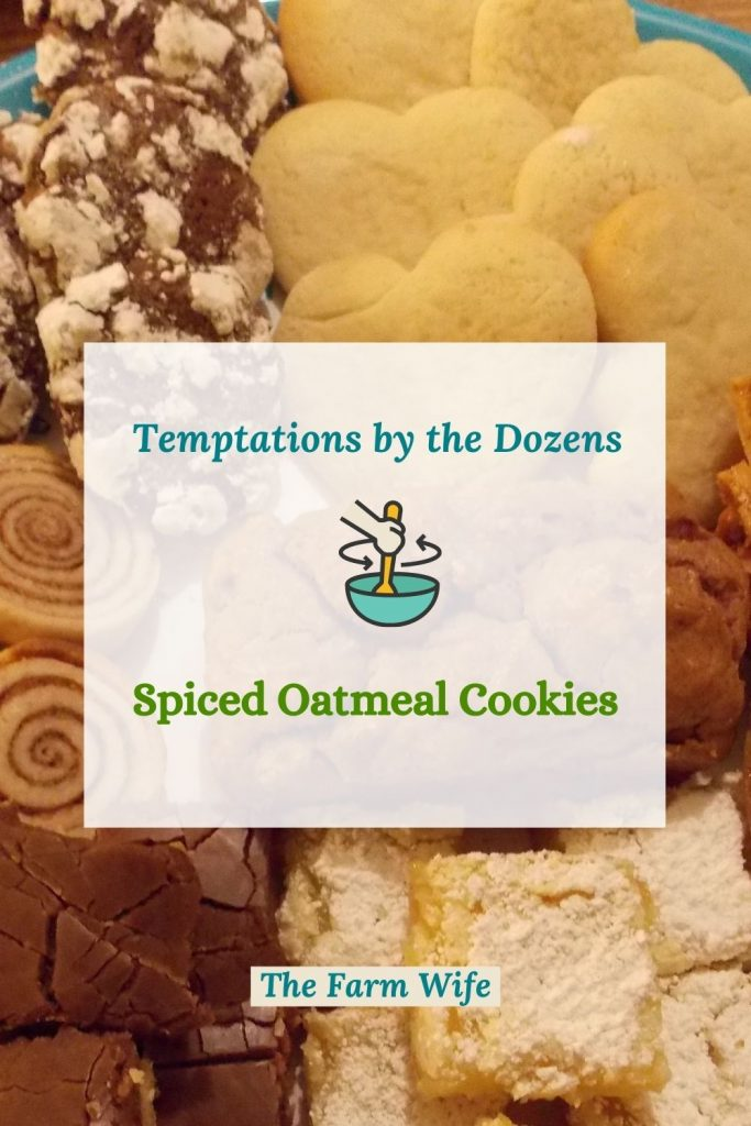 Find Temptations by the Dozens with these delicious Spiced Oatmeal Cookies!