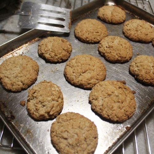 spiced oatmeal cookies just coming out of the oven