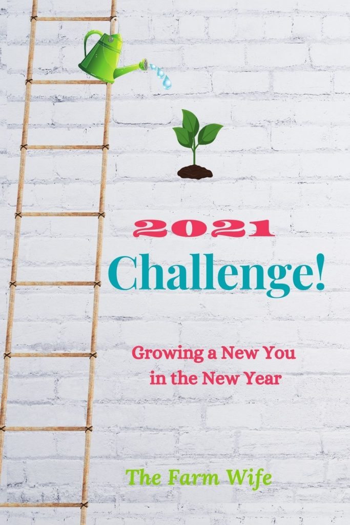 Take the 2021 Challenge - Learn how to Become a New You in the New Year!