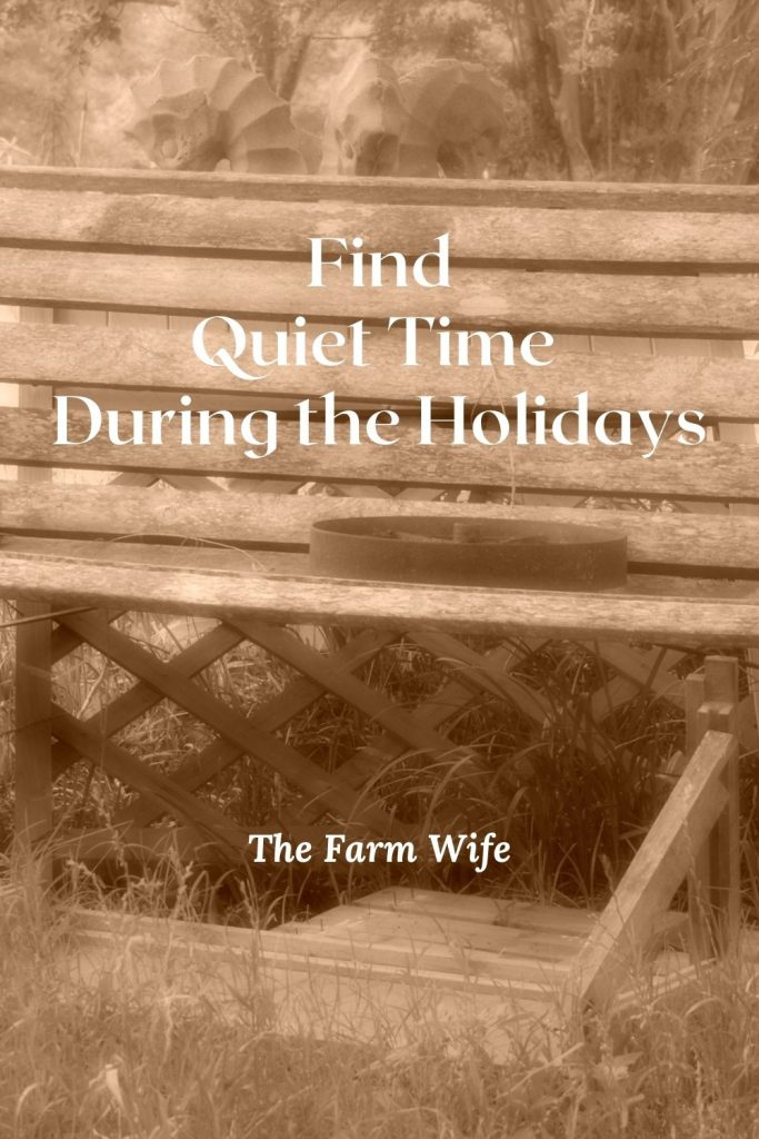 Are things going crazy? Find 5 Tips to help you find quiet time during the holidays!