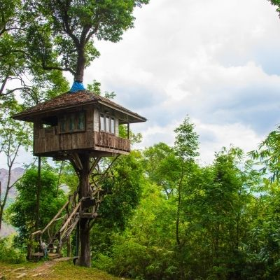 a tree house escape to have quiet amid the madness