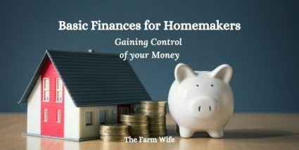 Learn basic finances for homemakers here!