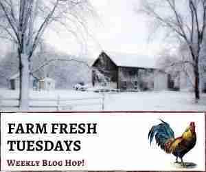 farm fresh tuesday blog hop 92