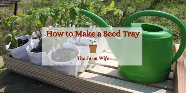 how to build a seed tray