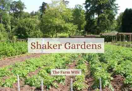 shaker garden