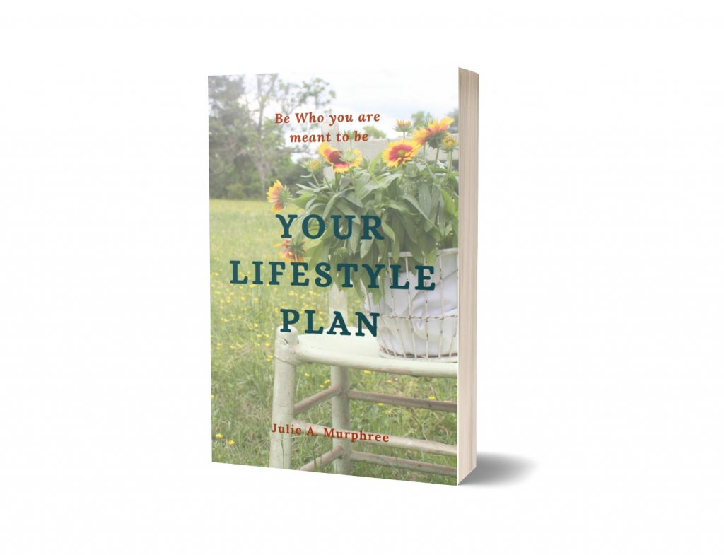 your lifestyle plan ebook