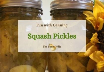 canning squash pickles