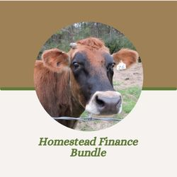 Homestead Finance Bundle