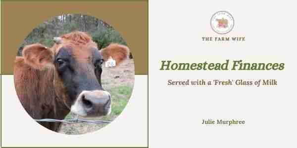 homestead finances